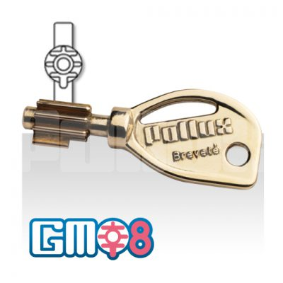 Reproduction de clé protégée GMO8-0